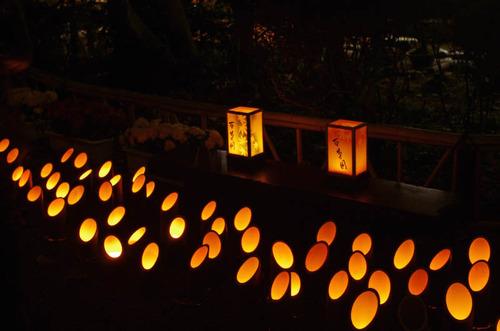 百草園紅葉ライトアップ201211-6