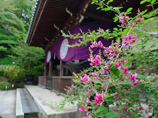 高幡不動20090927-5