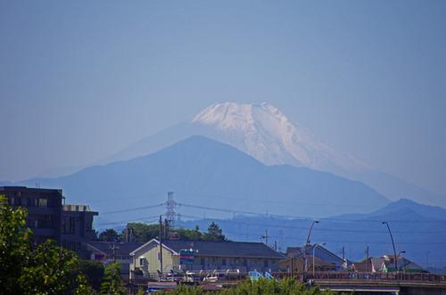 高幡不動201210-13