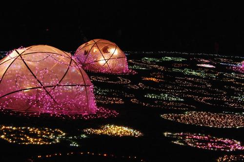 昭和記念公園イルミネーション201012-26