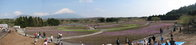 富士芝桜全景