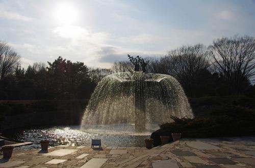 昭和記念公園201202-14