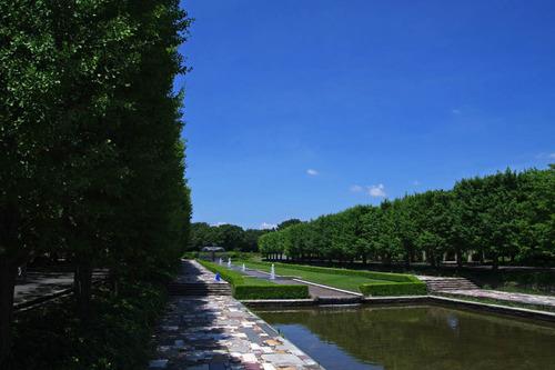 昭和記念公園201007-1
