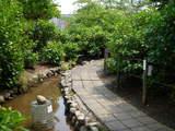 緑の高幡不動0517-4