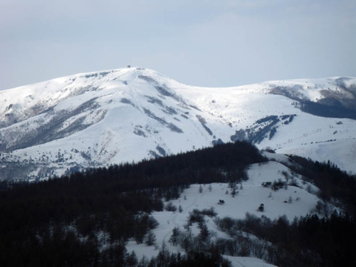 白樺スキー201303-11