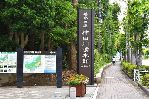 柿田川公園201607-1