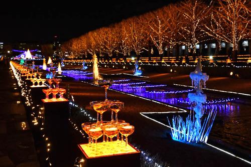 昭和記念公園イルミネーション2016