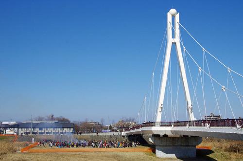 浅川河川敷201301-9