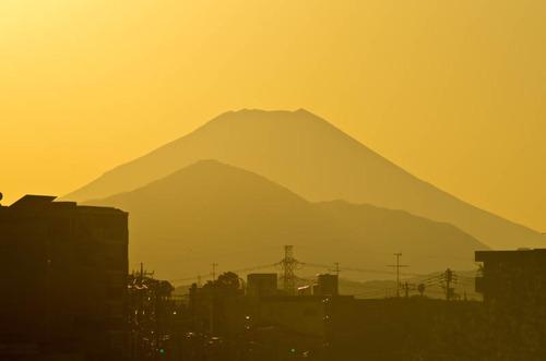 浅川河川敷201112-7