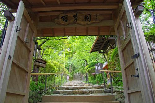 京王百草園201206-1