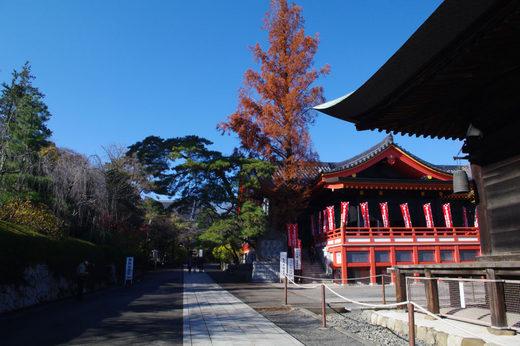 高幡不動尊20091206-2