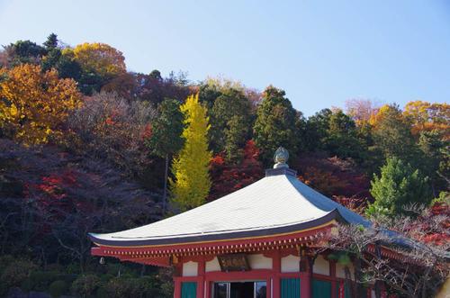 高幡不動201112-11