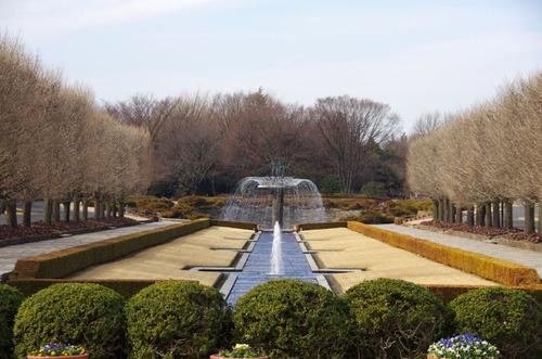 昭和記念公園201101-12