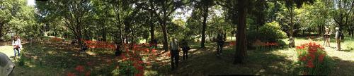 昭和記念公園201209-12
