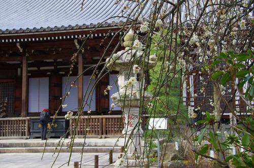 高幡不動201102-3