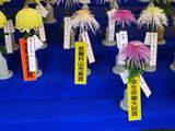 菊まつり受賞-7