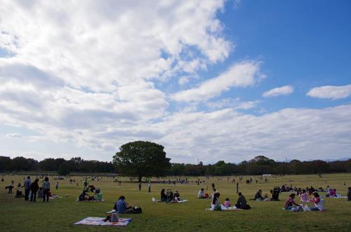 昭和記念公園201211-4