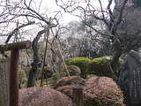 百草園内散策1