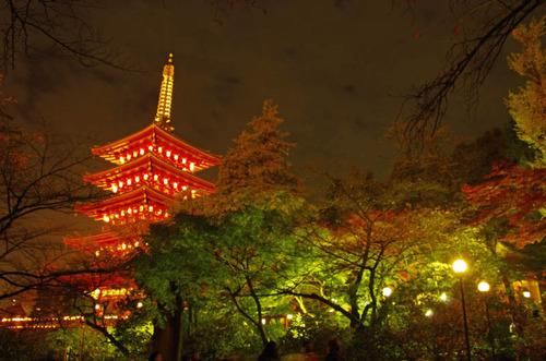 高幡不動尊万燈会201211-11