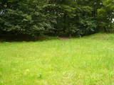 親水緑地6