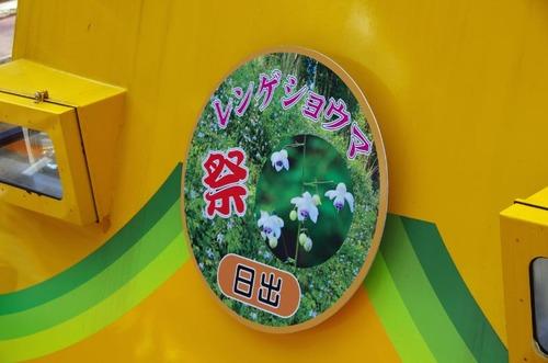 御岳山レンゲショウマ201208-18