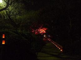 百草園の紅葉-S5