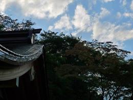 高幡不動尊20091003-6