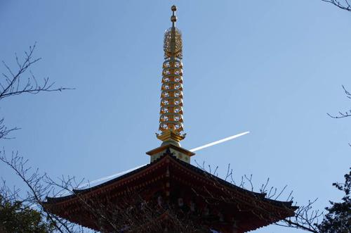 高幡不動201301-8
