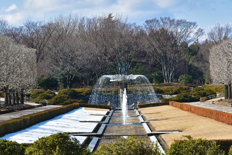 昭和記念公園20160113