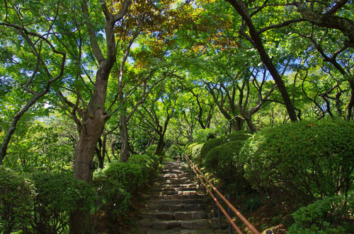 京王百草園201208-10