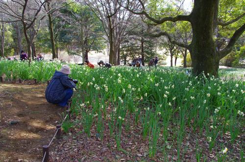 昭和記念公園201101-11