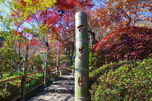 京王百草園201311-2