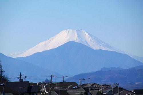 高幡不動尊20100124-6
