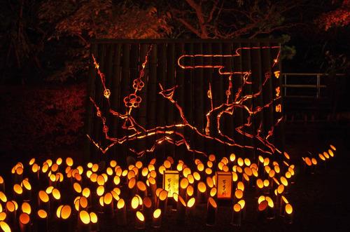 百草園紅葉ライトアップ201211-5