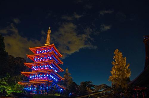 高幡不動尊ブルーライトアップ2012-5
