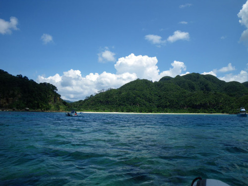西表島船浮イダの浜201108-12