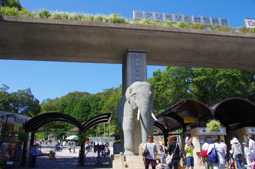 多摩動物公園201109-1