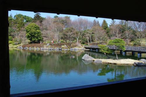昭和記念公園日本庭園-8