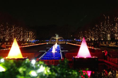 昭和記念公園イルミネーション201012-1