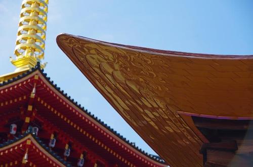 高幡不動201211-11