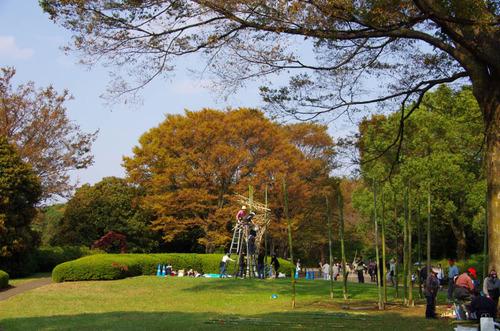 昭和記念公園201110-12