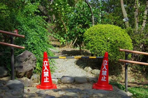 京王百草園201109-5