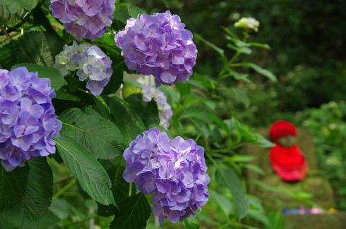 高幡不動201206-6
