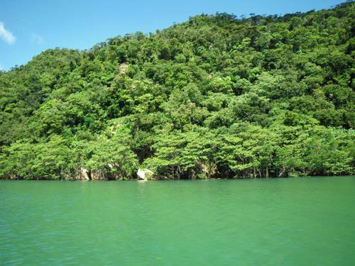西表島201108-1