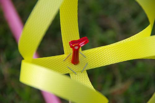 昭和記念公園201110-17
