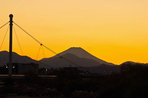 浅川河川敷201112-11