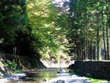 陣馬の滝-7