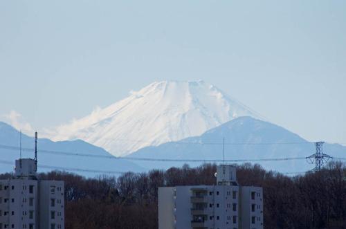 京王百草園201202-10