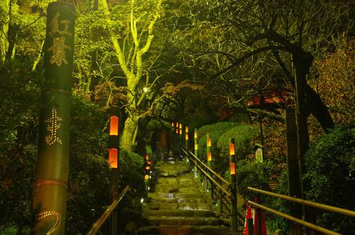 百草園紅葉ライトアップ201211-13