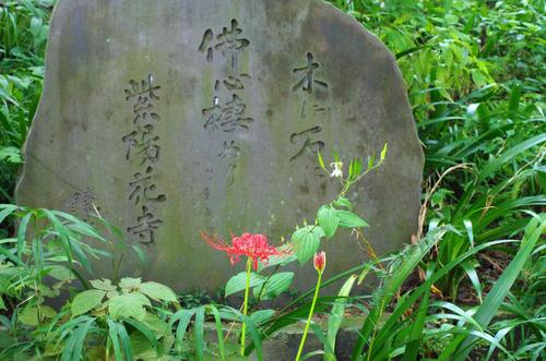 高幡不動201409-6